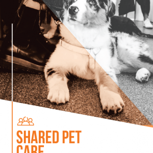 Shared Pet Care Agreement